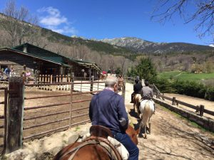 Monta a caballo y ponte en forma ¡ya!