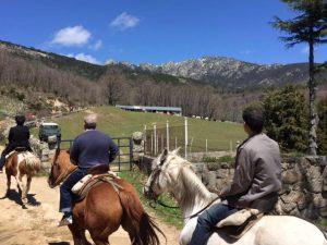 Rutas a caballo Madrid