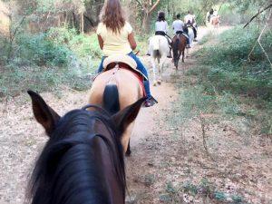 Regala Rutas a caballo por la Sierra Norte de Madrid
