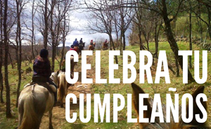 celebra tu cimpleaños caballos