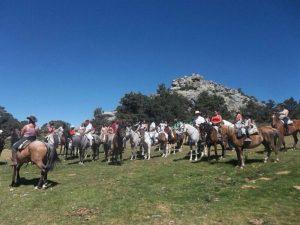Excursiones a caballo en Cercedilla