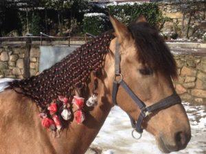 Guía para montar a caballo en Madrid