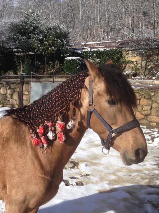 guia para montar a caballo en madrid