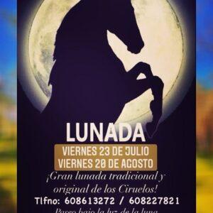 paseo nocturno a caballo madrid