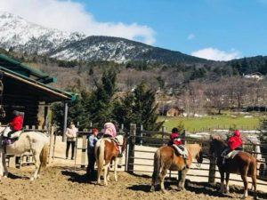 El regalo de comunión perfecto en 2018: Paseo a caballo en Madrid
