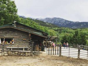 Fantásticas rutas a caballo en Madrid al mejor precio