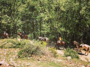 Si visitas Madrid, haz una ruta a caballo