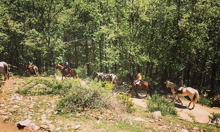 haz una ruta a caballo
