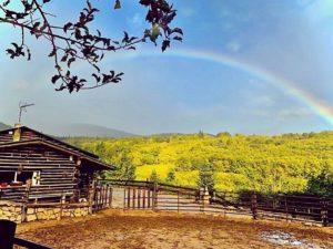 Montar a caballo en otoño: Paisajes sorprendentes