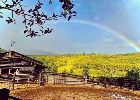 paseos a caballo en otoño