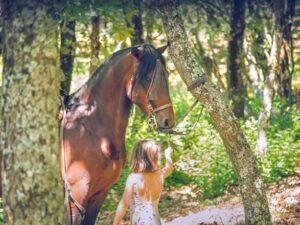 Excursiones a caballo en Verano